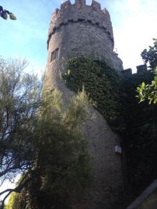 Castle Malahide