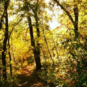gorgeous October hike at Indian Caves