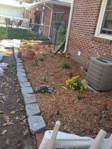 I was pretty proud of the flowerbed I built! Dug that thing up by hand.