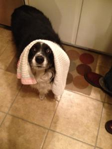 what, you don't wear towels on your head?